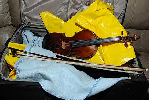 Appraisal Group violin
